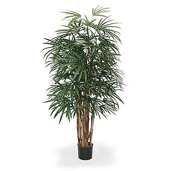 Kunst Raphis Palm Deluxe 160 cm FR