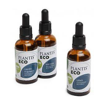 Gingko Extract Eco (alkoholiton) 50 ml