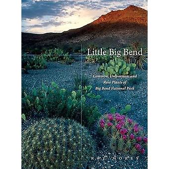 Little Big Bend by Roy Morey