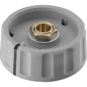 Ritel 67 36 76 1 Control knob + continuity Grey (Ø x H) 36 mm x 14 mm 1 pc(s)