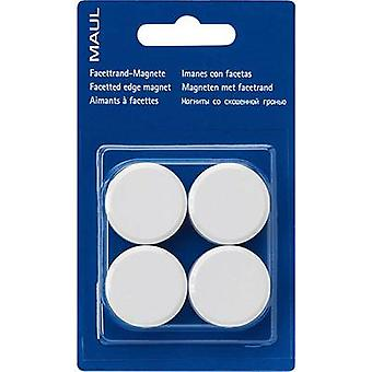 Maul magneet MAULpro (Ø x H) 30 mm x 10 mm rond, facet Edge wit 4 PC (s) 6177202