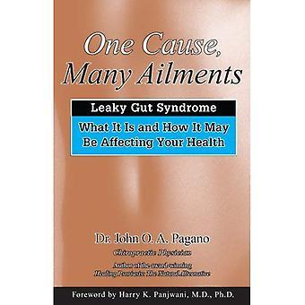 : Una causa muchas dolencias Leaky Gut Syndrome, lo que es y cómo puede afectar su salud