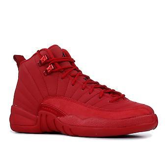 Air Jordan 12 Retro (Gs) - 153265-601 - Shoes