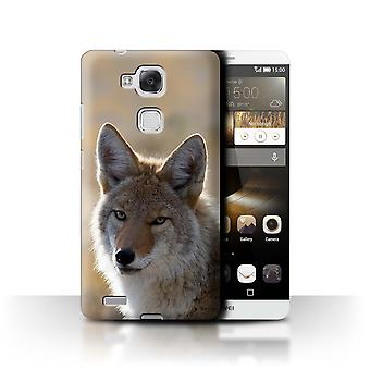 STUFF4 Case/Cover for Huawei Ascend Mate7/Coyote/North America Animals