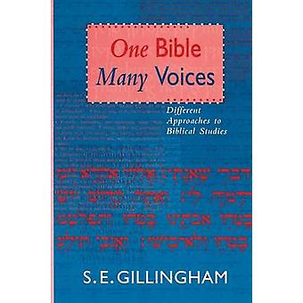 One Bible Many Voices Different Approaches To Biblical Studies by Gillingham & Susan