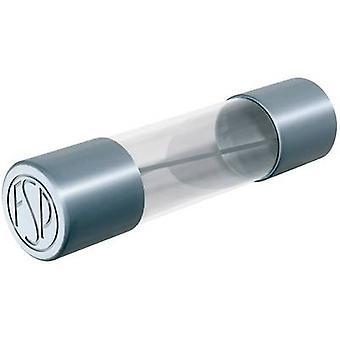 Püschel FST6,3B Micro fuse (Ø x L) 5 mm x 20 mm 6.3 A 250 V Time delay -T- Content 10 pc(s)