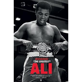 Muhammad Ali Belt Poster Print Poster Poster Print
