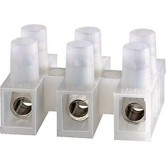 Adels-contatto 123312 morsetto flessibile: mm ²-2,50 fisso:-2,50 mm ² numero di pin: 12 1/PC Ecru