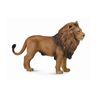 CollectA African Lion