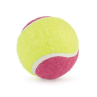 Ancol Tennis Ball (Pack Of 20)