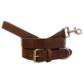 Bradley crompton genuine leather matching pair dog collar and lead set bcdc4tanbrown