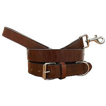 Bradley crompton véritable cuir correspondant collier de chien paire et lead set bcdc4tanbrown