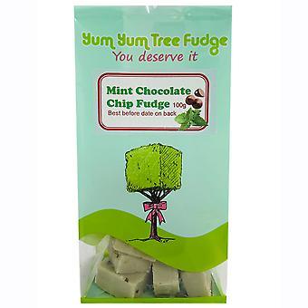 Yum Yum Tree Mint Chocolate Chip Fudge