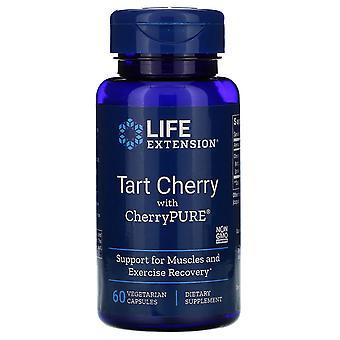 Prolongation de la durée de vie utile, Tarte cerise avec CherryPURE, 60 capsules végétariennes