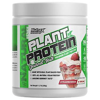 Plant Protein, Strawberries & Cream - 536 grams