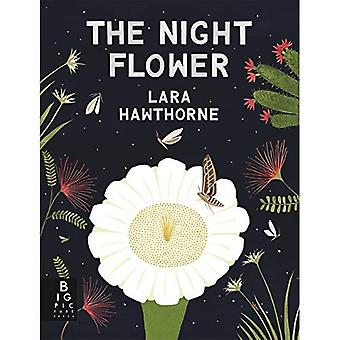 La fleur de nuit