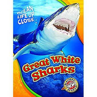 Great White Sharks by Rebecca Pettiford - 9781626174160 Book