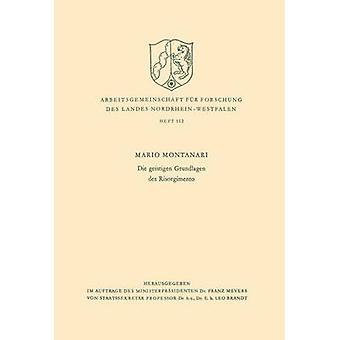Die geistigen Grundlagen des Risorgimento av Montanari & Mario