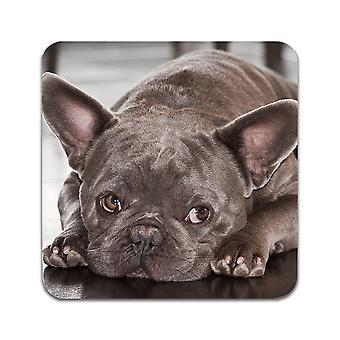2 ST Dog French Bulldog Coasters