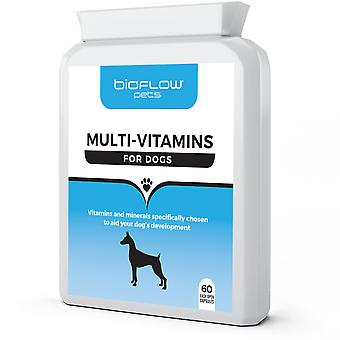 Bioflow - Multi-Vitamin Supplement For Dogs