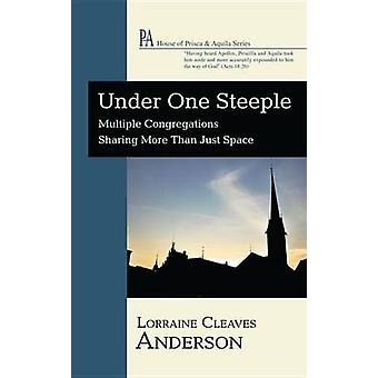 Under One Steeple - Multiple Congregations Sharing More Than Just Spac