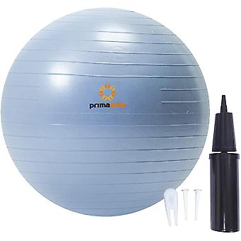 Gerui 【Amazon.com Limited Brand】 Exercise Ball (45cm Pale Gray) for Stability, Balance, Fitness With