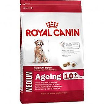 Royal Canin Dog Medium Ageing 10+ Dry Food Mix 3kg