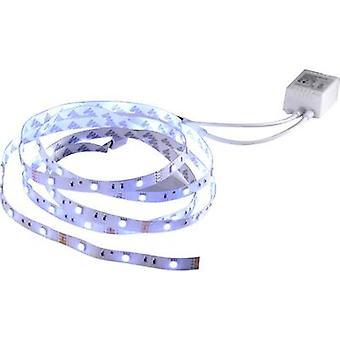 LeuchtenDirekt Teania 81209-70 LED Streifen set + 12 V 300 cm RGB Stecker