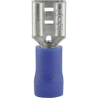 Receptáculo de Vogt Verbindungstechnik 3906 lâmina largura do conector: 6,3 mm conector espessura: 0.8 mm 180 ° parcialmente isolado azul 1 computador (es)