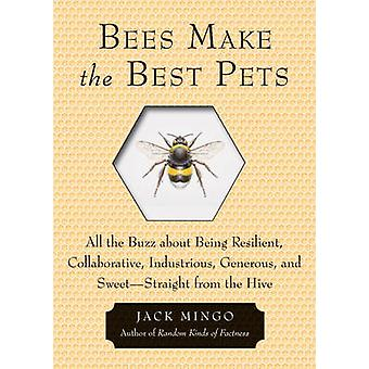 Bees Make the Best Pets - All the Buzz About Being Resilient - Collabo