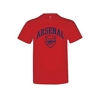 Arsenal Childrens/Kids T Shirt With Team Crest Design