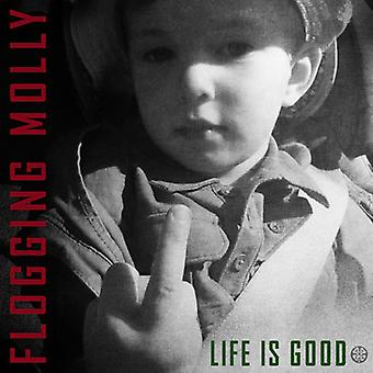 Flogging Molly - Life Is Good [Vinyl] USA import