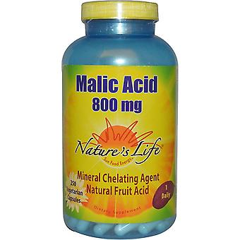 Nature's Life, Malic Acid, 800 mg, 250 Veggie Caps