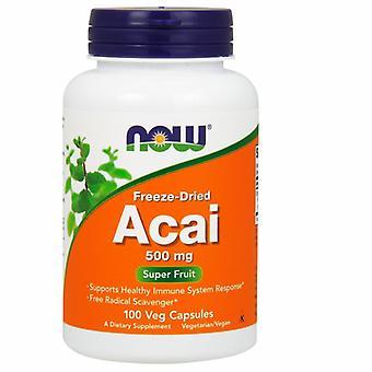 Maintenant Foods Acai, 500 mg, Bio Lyophilisé 100 Vcaps
