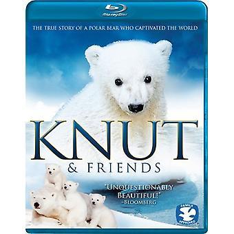 Knut & Friends [BLU-RAY] USA import