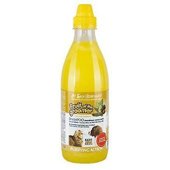 San Bernard Zenzero-Sambuco Shampoo (Ginger-Elder) 1000 Ml