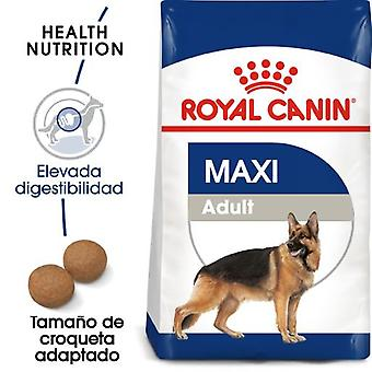Royal Canin Maxi Adult +5 (Dogs , Dog Food , Dry Food)