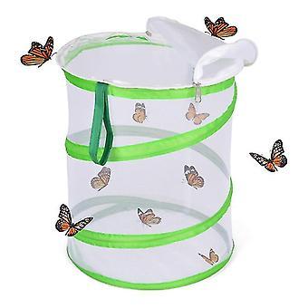 Original Habitat And Two Live Cups Of Caterpillars With Stem Butterfly Journal
