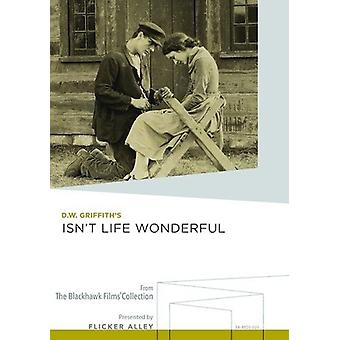 Isn't Life Wonderful [DVD] USA import
