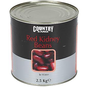 水の国範囲赤い腎臓豆