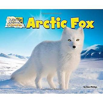 Arctic Fox (Arctic Animals: Life Outside the Igloo)