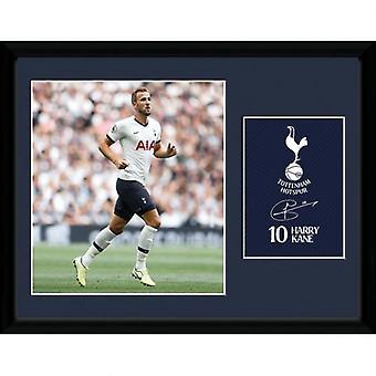 Tottenham Hotspur Picture Kane 16 x 12