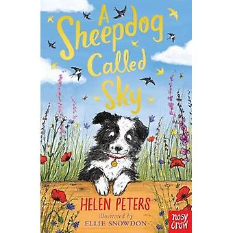 Sheepdog Called Sky by Helen Peters