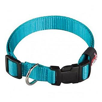 Arppe Nylon Basic Turquoise Necklace (Dogs , Collars, Leads and Harnesses , Collars)