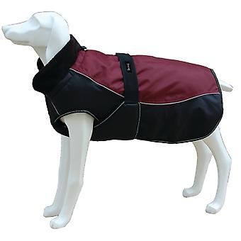 Freedog North Pole Model C Garnet Jacket (Dogs , Dog Clothes , Coats and capes)