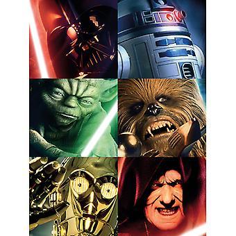 Star Wars Neliöt Canvas Plate 30 * 40cm