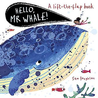 Hello - Mr Whale! by Sam Boughton - 9781787415713 Book
