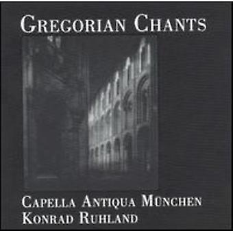 Gregorian Chants - Gregorian Chants [CD] USA import