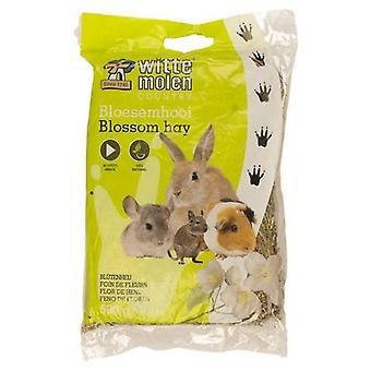 Witte Molen Heno Jazmin (Pienet Lemmikkieläimet, heinää, vuodevaatteet)