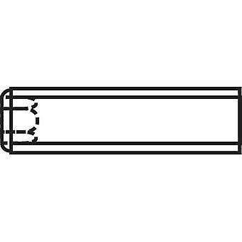 تولكرافت 222521 اليرقة المسمار M3 10 مم 20 الفولاذ pc(s)